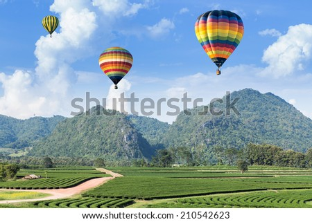 Hot air balloon over the mountain and tea plantation - stock photo