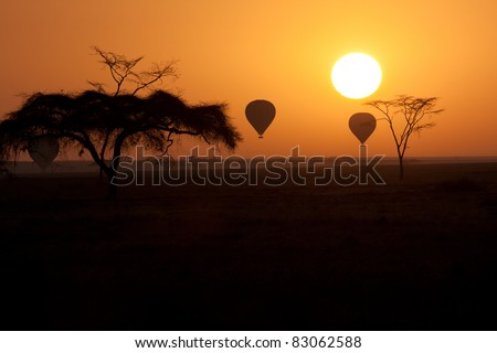 Hot Air Balloons flying over Serengeti Tanzania at sunrise. - stock photo