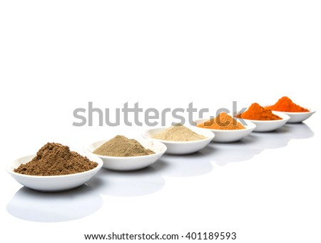 Hot and spicy spices powder, cayenne powder, chilly powder, peppercorn powder, paprika powder, black pepper and white pepper powder in white bowl over white background - stock photo