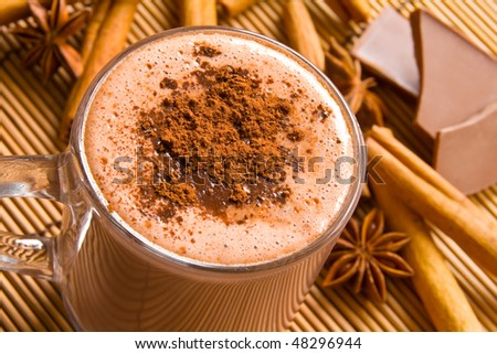 Hot chocolate and spices - stock photo