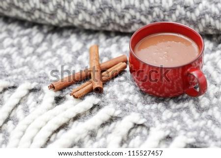 hot chocolate with cinnamon - sweet food /shallow DOFF/ - stock photo