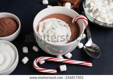 Hot Cocoa in White Mug with Marshmallows, Candy Cane , and ingredients - stock photo