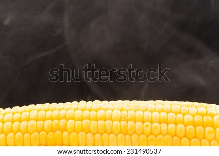 hot corn and steam emanating from it - stock photo