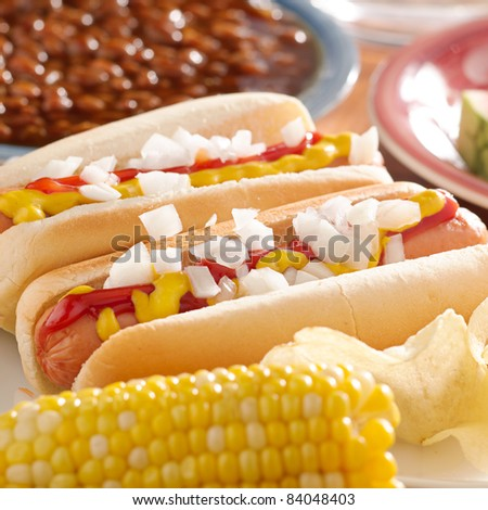 hot dog meal with onion, ketchup and mustard as topping - stock photo