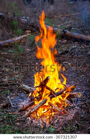 hot fire in forest tourist camp - stock photo