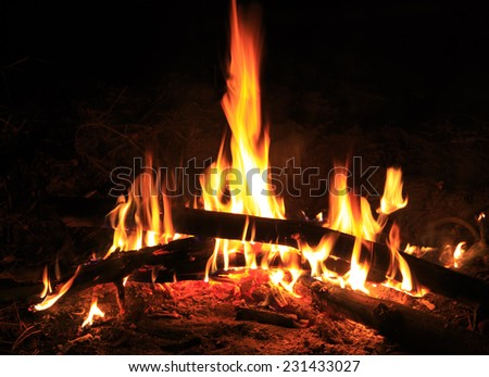Hot flame of fire in night - stock photo