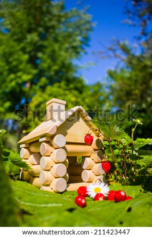 House in the strawberry field - stock photo