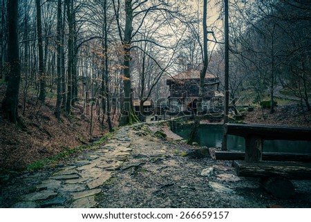 House in the woods - processed colors - stock photo