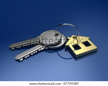 House key isolated on color background - stock photo