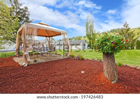 House with large backyard. View of gazebo and decorative tree - stock photo
