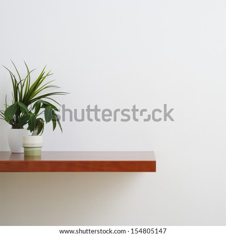 houseplant on counter table - stock photo
