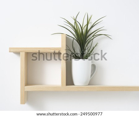 houseplant on wooden shelf - stock photo