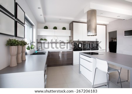 Houseplants in exclusive kitchen in modern style - stock photo