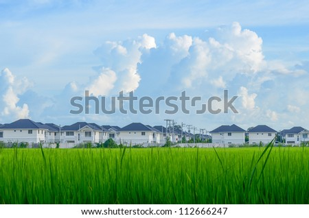 Housing estate in Field and the blue sky - stock photo