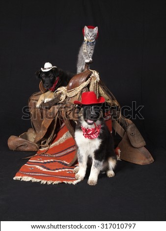 How the West was won - stock photo