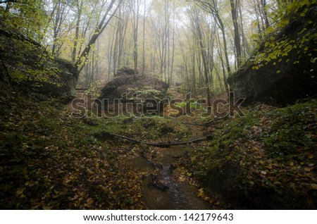 huge cliff in a misty forest - stock photo