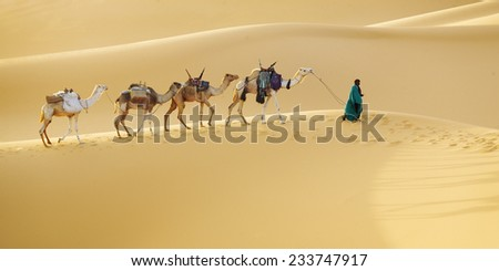 Huge dunes of the desert. Fine place for photographers and travelers. Beautiful structures of sandy barkhans. Caravan and driver. - stock photo
