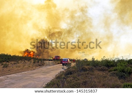 Huge forest fire threatens national park at the westcoast in Portugal - stock photo