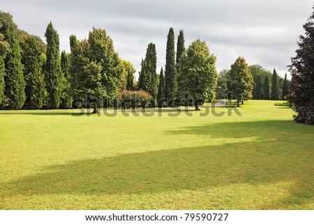 Huge yellowed field in a luxurious Italian park-garden Sigurta around Verona - stock photo