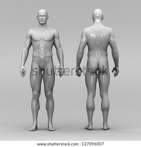 Human anatomy and joints - stock photo