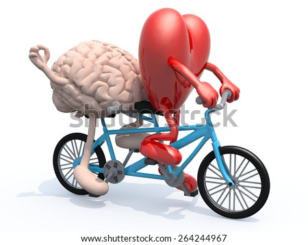 human brain and heart with arms and legs riding tandem bicycle, 3d illustration - stock photo