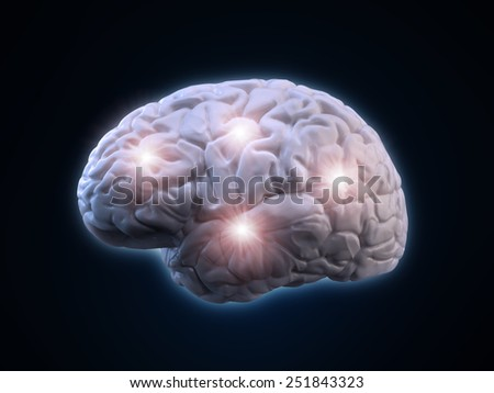 Human brain illustration - human anatomy - stock photo