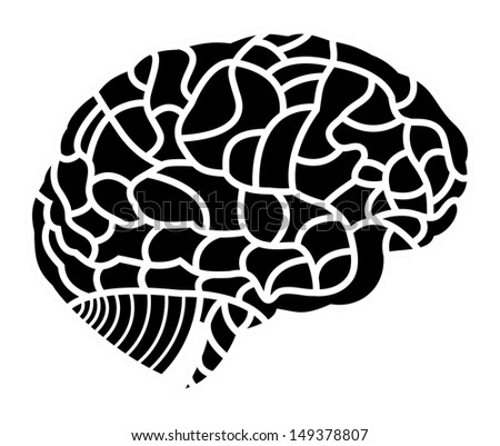 human brain model - stock photo