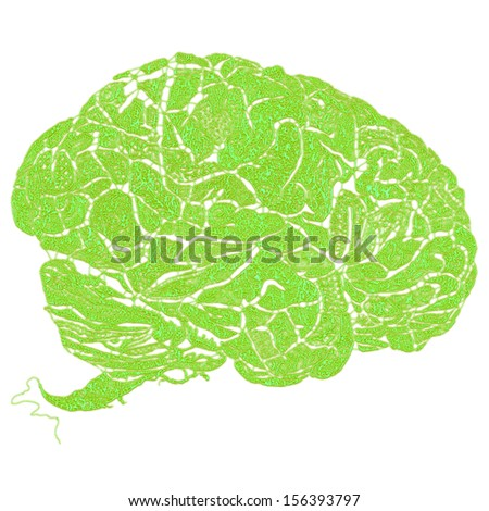 Human brains with green floral wrinkles on a white background - stock photo
