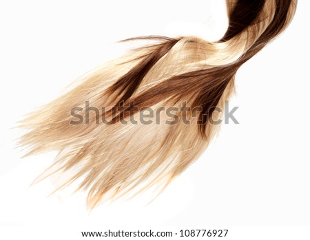 human brown and blonde hair on white isolated background - stock photo