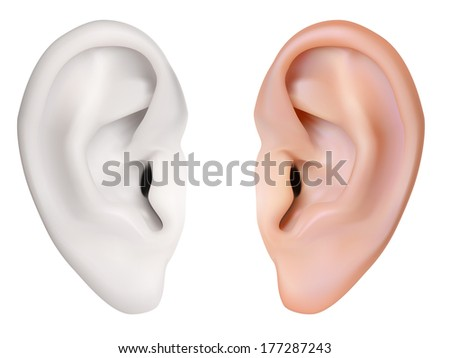 Human Ear. Isolated on white. Illustration - stock photo