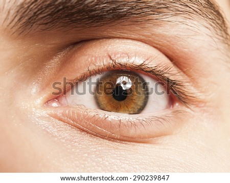 human eye cloe up - stock photo