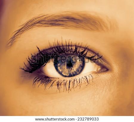 Human eye close-up. Macro shot. Color toned image.  - stock photo