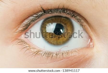 Human eye close up studio shot. Child eye. - stock photo