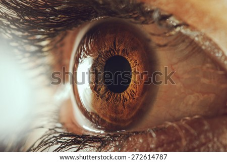 human eye macro - stock photo
