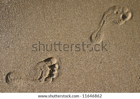 human footprint on sea sand beach - stock photo