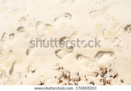 human footprints in the sand on the beach - stock photo