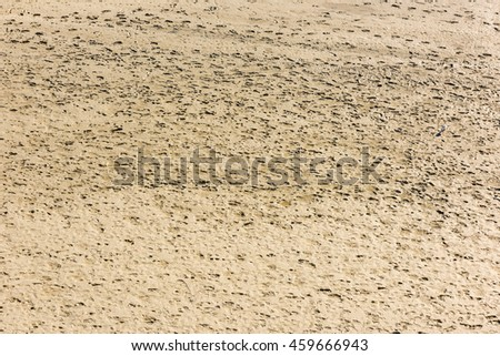 Human footprints on the sand of the sea bottom during a low tide - stock photo