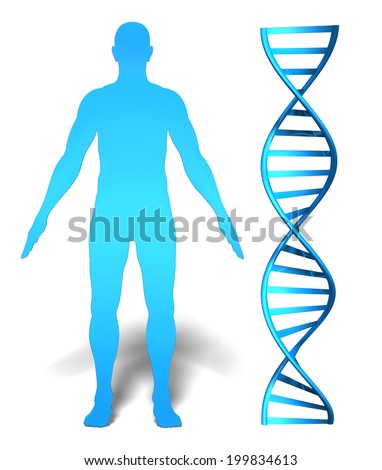 Human gene research and genetic information concept featuring a man's silhouette beside a DNA spiral - stock photo