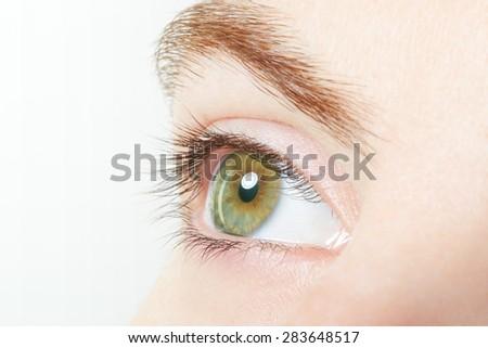 Human, green healthy eye macro with white background - stock photo