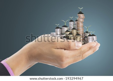Human hand cover small growing money plant for investment in the future - stock photo