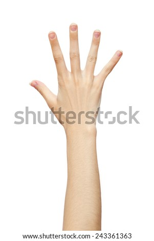 Human hand five fingers isolated on white background. studio photo - stock photo