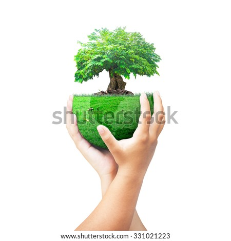 Human hand holding big tree with a green earth globe of grass isolated on white background. Investment, Ecology, World Environment Day, Corporate Social Responsibility (CSR) concept. - stock photo