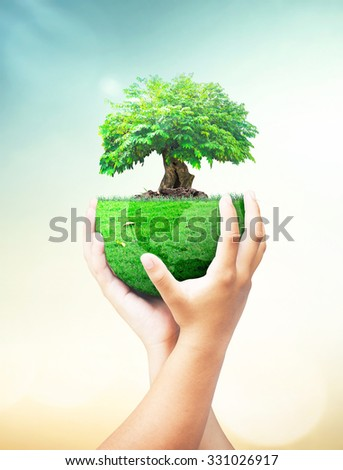 Human hand holding big tree with a green earth globe of grass on blur abstract beautiful sunset background. Investment, Ecology, World Environment Day, Corporate Social Responsibility (CSR) concept. - stock photo