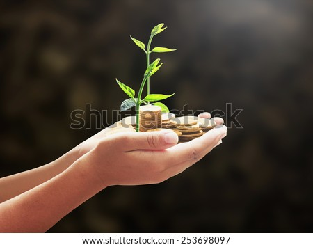 Human hand holding golden coins with young plant. Seedling and coins. Money coin concept. - stock photo