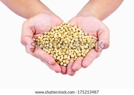 Human hand holding ripe soy bean on isolated background - stock photo