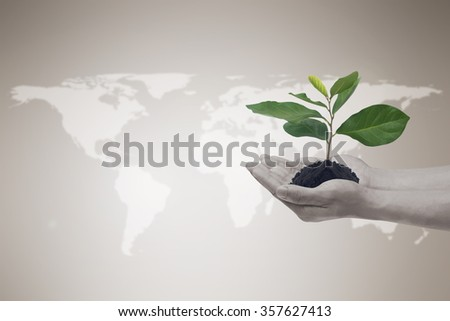 human hands hold a little growing plant on blurred map world and vintage beige brown tone backdrop:man hand with a green leaf tree:safe globe life concept:helping earth conceptual.business responsible - stock photo