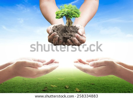 Human hands holding a big tree and human open empty hands with palms up over blurred nature background. Ecology concept. - stock photo