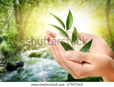 Human hands holding organic soap - stock photo