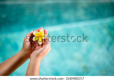 Human hands holding Plumeria flower over water - stock photo