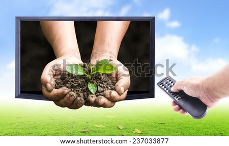 Human hands holding remote and monitor display human hands holding young plant over nature background. Ecology concept. nature frame for entering text over the actual location. - stock photo